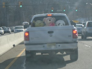 stuffed-animals-truck