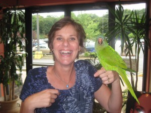 parrot-jen